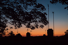Neighbourhood Roofs at 03:40:11 UK (+Pattycake+) Tags: city dusk sunrise sky tree roofs skyline orange blue yellow morning canon70d iso6400 toearlytobeawake