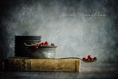 More Redcurrants! (Janet_Broughton) Tags: lensbaby twist60 food foodphotography foodasart