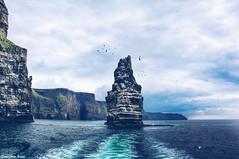 The World is Big (gusdiaz) Tags: cliffsofmoher moher cliffs branaunmore ireland vacation trip cruise nature naturephotography canon canonphotography amazing beautiful hermoso barco mar agua cielo paisaje roca rocas bahig grama montañas colinas oceano sendero senderismo
