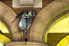 Marylebone station, Melcombe Place, NW1 (Tetramesh) Tags: tetramesh london england britain greatbritain gb unitedkingdom uk guesswherelondon gwl guessed guessedbylaters laters guessedbyalan alan gwlguessed marylebonestation melcombeplace nw1
