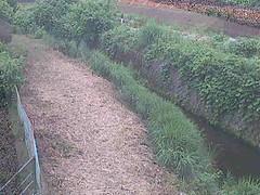 境川風戸橋ライブカメラ画像. 2018/06/23 10:51 (River LiveCamera) Tags: id2186 rivercode1400130001 ym201806 境川 風戸橋 ymd20180623
