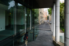Exterior view of Keio University, Mita Campus, South Building (慶應義塾大学三田キャンパス 南館) (christinayan01 (busy)) Tags: tokyo japan architecture building perspective garden university tree window road