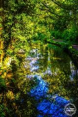 Glamorgan Canal (Elle.Rebecca Photography) Tags: canal glamorgan glamorganshire walk cardiff wales uk reflection reflect sun summer