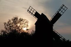 Silhouette (evisdotter) Tags: silhouette siluett windmill väderkvarn tree träd evening sun kvällssol sooc mariehamn