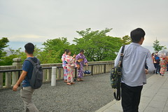 DSC_0028 (sxcxxhx) Tags: japan osaka kyoto hydrangea flower trip voyage 日本 大阪 京都 旅行