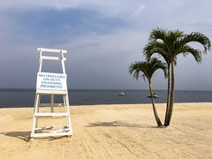 Bayville, NY (pepsigirl917) Tags: sand sign stand lifeguard tree noswimming beach water