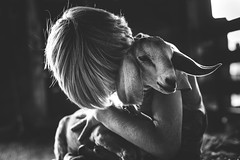 For the love of goat! (Elizabeth Sallee Bauer) Tags: