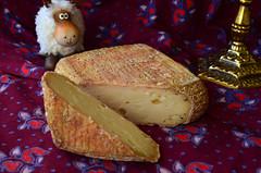Flor Majazul (natural) (Ricard2009 (Martí Vicente)) Tags: ilobsterit queso fromage cheese formatge kaas formaggio queijo ost sir τυρί сыр sūris peynir brânză gazta sajt caws сирене גבינה جبنة チーズ 奶酪 flormajazul sheepcheese quesooveja