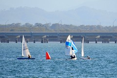 800_5029 (Lox Pix) Tags: queensland qld australia catamaran trimaran hyc humpybongyachtclub winterbash loxpix foilingcatamaran foiling bramblebay sailing race regatta woodypoint boat