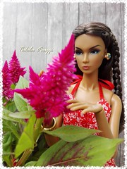 Changing Winds Eden Blair Fairytale Convention (F_Nika) Tags: dolls integritytoys fashionroyalty eden nuface