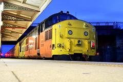 37219 - Wrexham General (Mark_Edwards_47769) Tags: class37 37219 colas colasrail wrexhamgeneral 1q41 derbyrtc rtc