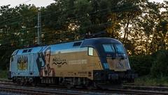 05_2018_08_05_Wanne-Eickel_Üwf_ES_64_U2_-_023_6182_523_DISPO_TXL (ruhrpott.sprinter) Tags: ruhrpott sprinter deutschland germany allmangne nrw ruhrgebiet gelsenkirchen lokomotive locomotives eisenbahn railroad rail zug train reisezug passenger güter cargo freight fret herne wanne eickel wanneeickel üwf atlu vectron siemens 6182 6185 6193 es 64 u2 es64u2 mrcedispo mrcedispolok mrce dispo stellwerk stellwerküwf txl txlogistik kaiser franz outdoor logo natur werbung