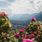 Alto Adige - Südtirol thumbnail