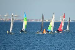 800_4748 (Lox Pix) Tags: queensland qld australia catamaran trimaran hyc humpybongyachtclub winterbash loxpix foilingcatamaran foiling bramblebay sailing race regatta woodypoint boat