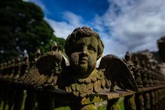 In an old graveyard (MaiGoede) Tags: graveyard friedhof ireland irland