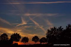 schlaft gut (grafenhans) Tags: sony alpha 68 a68 alpha68 slt landschaft landscape sonnenuntergang sonne abendsonne abendhimmel abendlicht wolken grafenwald bottrop nrw farben color baum bäume baumkrone sigma uww 1020