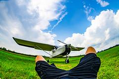 Black Bird (bonfa23) Tags: black bird photo photography nikon nikond7000 nikonphoto airplane sky clouds love like flickr aereo aviation avgeek fisheyes samyang 8mm fisheye green