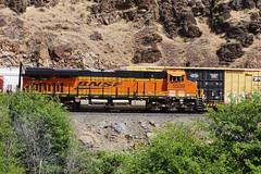 BNSF 5539 (AC44CW) (youngwarrior) Tags: train deschutescanyon railroad bnsf oil meet ge generalelectric locomotive ac44cw oregon