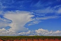 Clouds (Peideluo) Tags: paisaje campo cielo nubes clouds la mancha spain valdepeñas