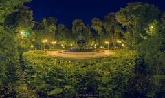 Night fountain (Lonely black cat) Tags: nightlights city cityscape mistic atmosphere trees outdoor дерева деревья grass вечер вечір нічнефото park nightshot nightscape nikon nikond600 kiev kyiv mariinskypark ukraine киев київ украина україна панорама парк фонтан fountain water photography nightphotography longexposure visualart shadow город місто d600 pano artartwork