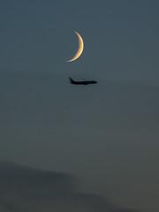 Moon (Дмитрий Левин) Tags: manfrotto manfrottobefreeadvanced sony sony70300ssm jet moon night plane sonya57 fotodiox