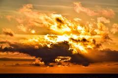 Flying beneath the sun (rustyruth1959) Tags: sun horizon shore lowtide lowwater irishsea sea water seabird orange glow clouds sundown seaside beach sunset coast fylde lancashire blackpool england uk tamron16300mm nikond5600 nikon sky evening light shadows outdoor rays