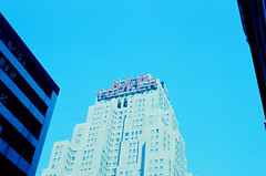 Rednewyork1 (pberry3370) Tags: film retrochrome fpp photography podcast nikon nikonfe2 dog aussie slidefilm nyc newyork centralpark
