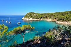 Cala Mitjana. (JCarlos.) Tags: cala agua pinos transparente azul turquesa verde verano summer ramas menorca