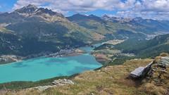 'Unser' Bänklein, 24.7.18 (ritsch48) Tags: engadin graubünden curtinella silvaplanersee silvaplana bank bergwelt