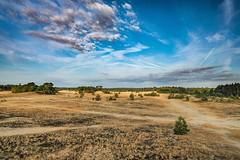 (thijs.coppus) Tags: droogte sky clouds wolken ochtend stuifzand zand sand apeldoorn holland dutch netherlands niederlande nederland kootwijkerzand kootwijk gelderland veluwe