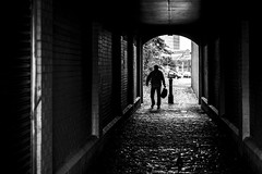 The Staggering (Leanne Boulton) Tags: monochrome people urban street candid streetphotography candidstreetphotography streetlife urbanlandscape man male old elderly staggering stagger walk tunnel alley alleyway cobbles cobblestones silhouette tone texture detail depth brick naturallight outdoor light shade shadow city scene human life living humanity society culture canon canon5dmkiii 70mm ef2470mmf28liiusm black white blackwhite bw mono blackandwhite glasgow scotland uk