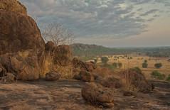 Rocky Aspect (Peedie68) Tags: nt australia northernterritory maryrivernationalpark sandstone rock sunrise grass