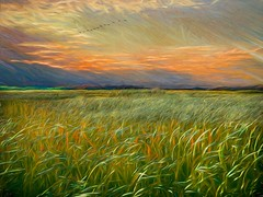 Salisbury Sunset (Rusty Russ) Tags: sunset sky marsh grass mountain green orange salisbury plum island colorful day digital window flickr country bright happy colour eos scenic america world beach water red nature blue white tree art light sun cloud park landscape summer city yellow people old new photoshop google bing yahoo stumbleupon getty national geographic creative composite manipulation hue pinterest blog twitter comons wiki pixel artistic topaz filter on1 sunshine image reddit tinder russ seidel