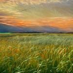 Salisbury Sunset thumbnail