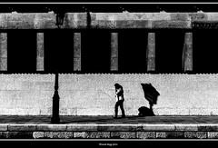 modern (hot) Venice (magicoda) Tags: italia italy magicoda foto fotografia venezia venice veneto bw persone people maggidavide davidemaggi passione passion voyeur candid bianco nero white black wife upskirt tourists donna woman long scarpe shoe barefoot gambe legs classic friends streetart nikon d750 dsrl reflex miniskirt 2018 caldo hot ombre ombra shadow dorsoduro santacroce inps