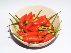 Red chili pepper isolated on a white background (www.icon0.com) Tags: chilli pepper red hot chili paprika green white mexico spice kitchen organic plant seasoning background fresh freshness closeup chile isolated ripe two mexican sharp pepperoni cayenne studio pile fiery bell vegetable macro flavoring object healthy vitamin color salsa cook ingredient cooking spicy image heat detail food eating capsaicin burning