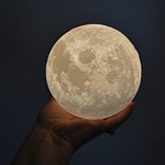 Holding The Moon thumbnail