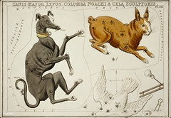 Sidney Hall's (1831) astronomical chart illustration of the Canis Major, Lepus, Columba Noachi and the Cela Sculptoris. Original from Library of Congress. Digitally enhanced by rawpixel. (Free Public Domain Illustrations by rawpixel) Tags: aerostatique animals antique art arts astrological astronomy birds canis cela celestial chains chart columba constellations dogs doves drawing etchings hall handcolored illustrated illustration locimage magical major map mythological name noachi noah old paints rabbits sculptoris scupting sidney sidneyhall sketch stars tools vintage zodiac
