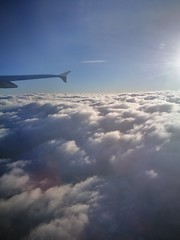 LUFThansa (T.Flat ッ) Tags: lh deutschelufthansa lh031 flug flugzeug airbus a321 fra ham eddf überdenwolken sonne sunshine upintheair flight aviation kurztripp tagestripp hinundzurück heimflug hh frankfurt frankfurtmain