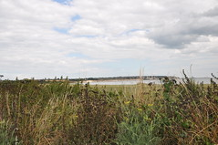 Pegwell Bay Country Park 1670 (Kent Country Parks) Tags: summer autumn spring pegwellbay country countryside kentcountryparks kent