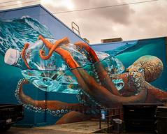 Get a Grip (Katrina Wright) Tags: 08122018 mural vancouvermuralfestival art painting wall dsc1706 octopus bottle shipinbottle 3d