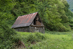 Vieille grange (RIch-ART In PIXELS) Tags: france hautegaronne barn grange fujifilmxt20 xt20 tree grass landscape building ariège pyrénées couflens salau