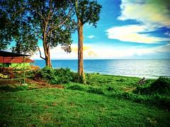 Sungai Baru Ilir, Malacca https://goo.gl/maps/iC9LCRRnDbQ2 #travel #holiday #旅行 #度假 #亞洲 #馬來西亞 #trip #traveling #beach #海滩 #pantai #วันหยุด #การเดินทาง #ホリデー #휴일 #여행 #праздник #путешествие #ビーチ #바닷가 #ชายหาด #пляж #nature #黃昏 #bluesky #tree #vakantie #reize (soonlung81) Tags: trip วันหยุด vacanza beach malaysia путешествие vakantie bluesky 휴일 馬來西亞 旅行 пляж reise spiaggia nature semester pantai ชายหาด 黃昏 bomen malacca albero 여행 asian plage voyage sungaibaruilir reizen strand 海滩 度假 바닷가 baum traveling ビーチ urlaub ホリデー การเดินทาง holiday праздник tree playa árbol vacances fiesta viaggio 亞洲 viaje travel