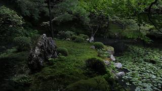Zen -  Kyoto Nanzen-ji Nanzen-in facing hojo 京都 南禅寺 南禅院