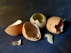 Broken. (jenichesney57) Tags: egg shells panasoniclumix cracked broken panasonic lumix blue shadows light stilll5fe