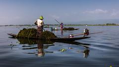 INL-0960 (Kwakc) Tags: inle lake myanmarburma travelphoto aerial photo shan mm inlelake