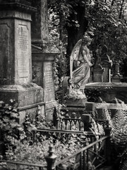 20180518-0226-Edit (www.cjo.info) Tags: 19thcentury 19thcenturyneogothic bw england europe europeanunion highgate highgatecemetery highgatecemeterywest london m43 magnificent7 magnificentseven magnificentsevengardencemeteries microfourthirds nikcollection olympus olympuspenfgzuikoautos40mmf14 olympuspenf penfmount silverefexpro silverefexpro2 unitedkingdom victoriangothic westerneurope angel animal architecture art blackwhite blackandwhite blur bokeh carving cemetery classiclens climbingplant death decay digital fauna flora focusblur girl gothic gothicrevival gravegraveyard ivy legacylens manualfocus monochrome mythicalcreatures overgrown people plant sculpture shallowdepthoffield statue stone stonework tree victorian wing wingedcreature woman wood wooded