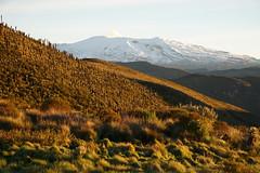 Nevado del Ruíz (monikato) Tags: nevado ruiz colombia páramo