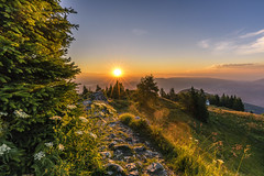 Sunrise on Uršlja gora (manuel.thaler) Tags: ursulaberg tree sunrise idyllic treetop sunset scenics horizon over land landscape sky uršlja gora slovenia karavanke karawanken plešivec