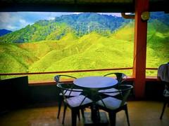Cameron Valley Tanah Rata, 39000 Ringlet, Pahang 05-491 5742 https://goo.gl/maps/yNfnM4mxpin  #travel #holiday #trip #traveling #旅行 #度假 #亞洲 #Asian #여행 #ホリデー #праздник #วันหยุด #Malaysia #restaurant #餐馆 #ร้านอาหาร #レストラン #ресторан #Restoran #식당 #travelMala (soonlung81) Tags: trip cameronhighland วันหยุด 餐馆 malaysia 馬來西亞 旅行 馬來西亞旅行 restoran 식당 ресторан restaurant 여행 asian 度假 traveling ร้านอาหาร 金马仑 ホリデー праздник holiday مطعم レストラン travelmalaysia 亞洲 travel